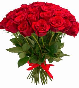 unnamed 1 - Вітаємо з ювілейним Днем народженням керівника ТОВ «Агрозахист» Бурака Олексія Миколайовича.